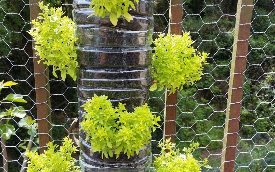 Poco espacio y mucho verde: jardines verticales