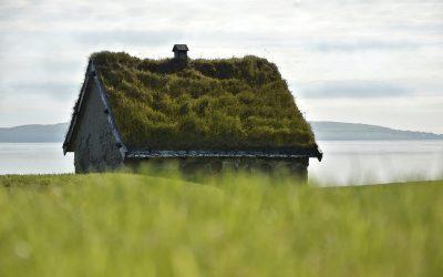 ¿Sabes qué son los techos verdes?